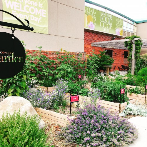 a photo of the St. Peter Food Co-op garden