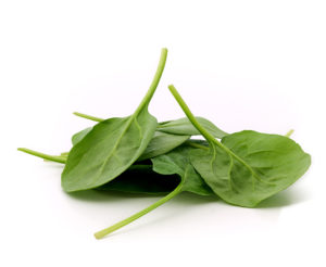 a photo of spinach