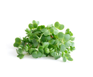 a photo of watercress