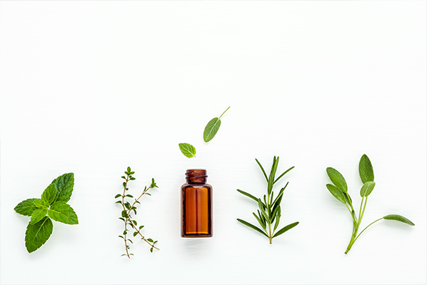a photo of plants and essential oils