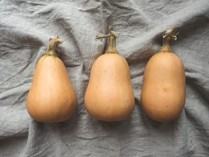 a photo of three butternut squash