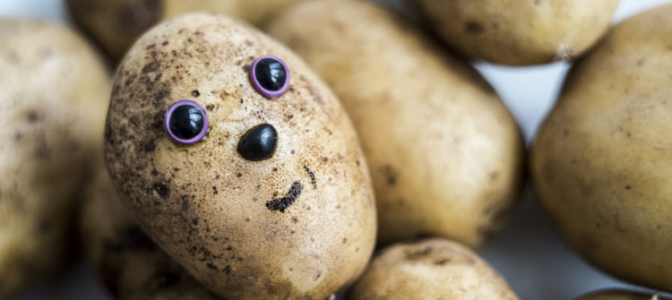 a photo of a face on a potato