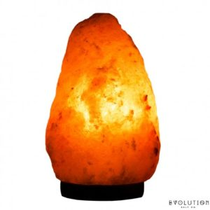 a photo of Evolution Salt Co. Lamps