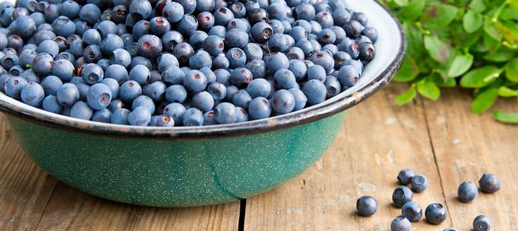 a photo of a bowl full of blueberries with some greens sitting on wooden boards