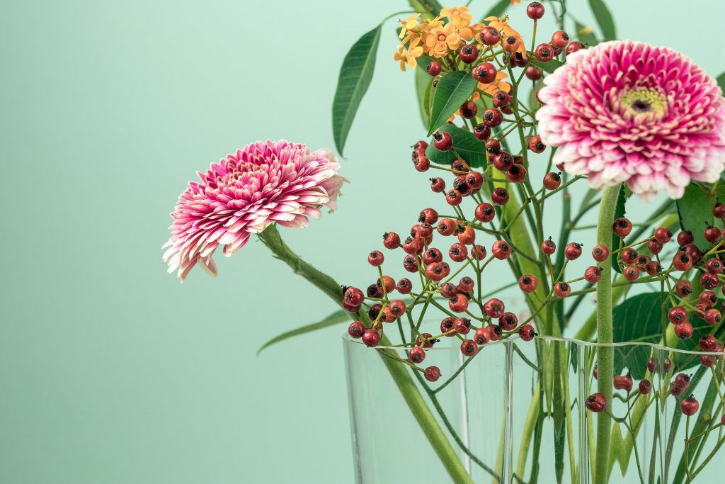 a photo of a vase of flowers against a green background