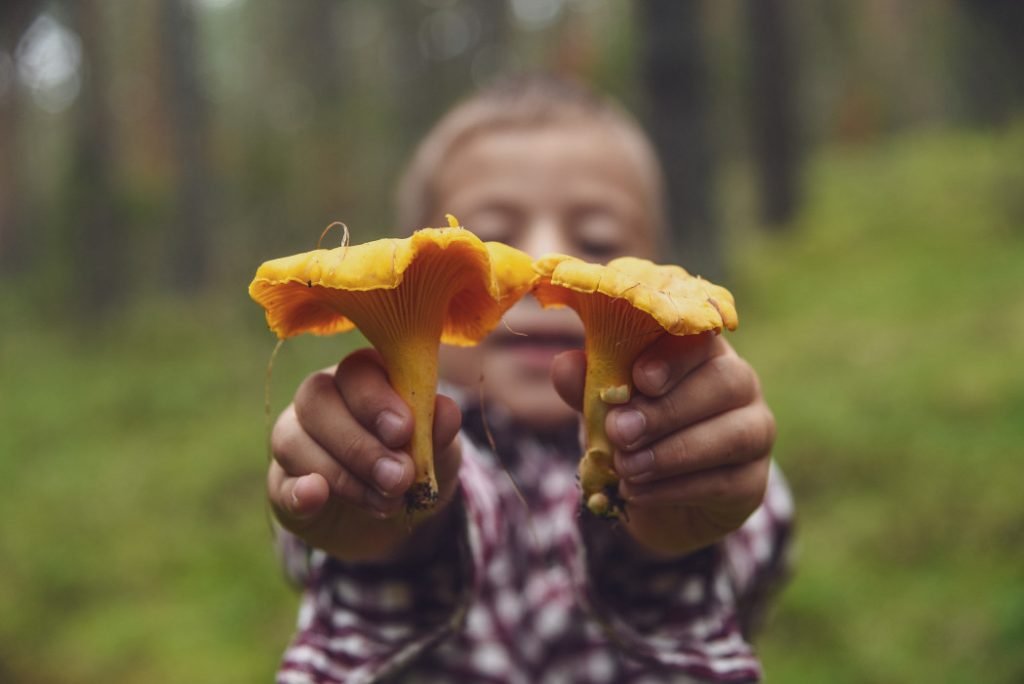a child holding out two mushrooms